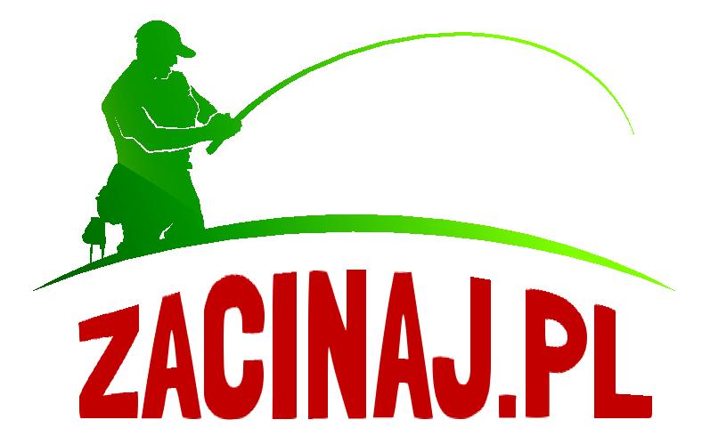 zacinaj.pl